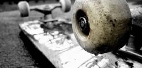 Best Gallery And Portfolio Wordpress Plugin Latest Assets 13