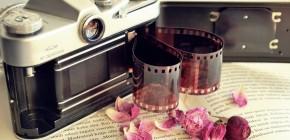 Best Gallery And Portfolio Wordpress Plugin Latest Assets 5